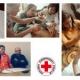 Kursy polskiego w projekcie Pierwsza pomoc dla migrantów